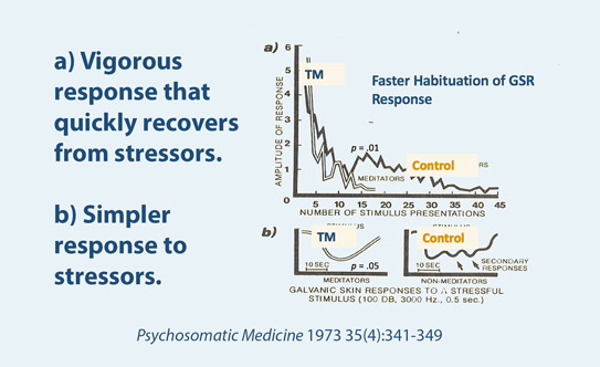 Faster Recovery from Stress: The Physiology of Increased Resilience